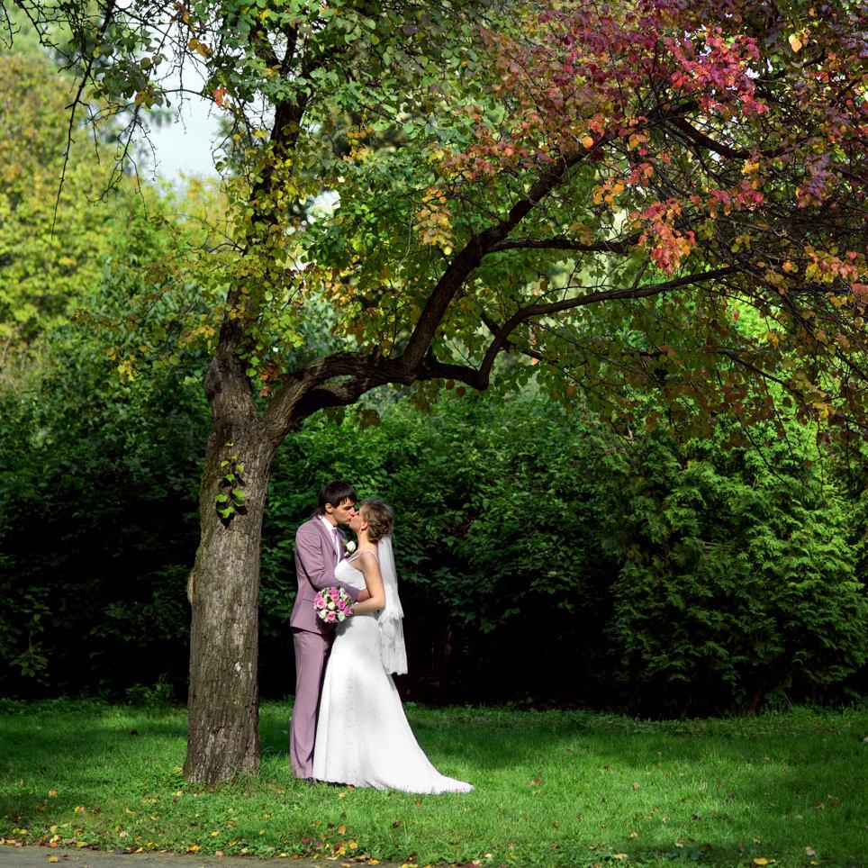 Осенняя свадебная фотосъемка